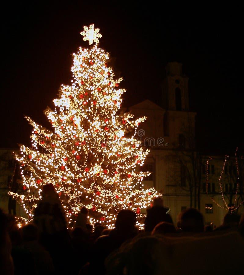 Weihnachtsbaum in der Nachtstadt stockbild