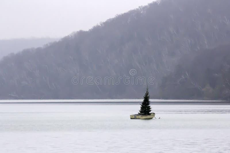 Weihnachtsbaum in einem Boot stockfotografie