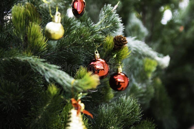 Weihnachtsbaum für das neue Jahr lizenzfreie stockfotografie