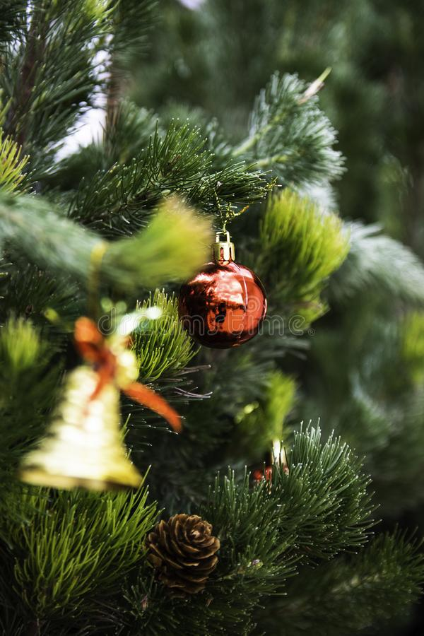 Weihnachtsbaum für das neue Jahr stockfoto