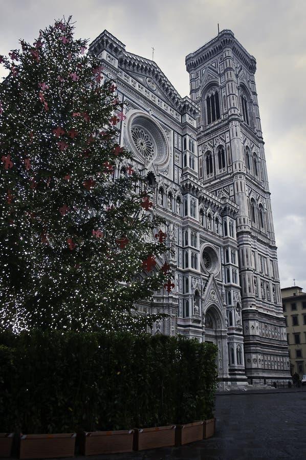 Weihnachtsbaum in Florence Duomo stockfotos