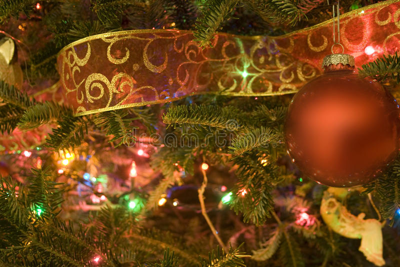 Weihnachtsbaum-Nahaufnahme stockfotografie