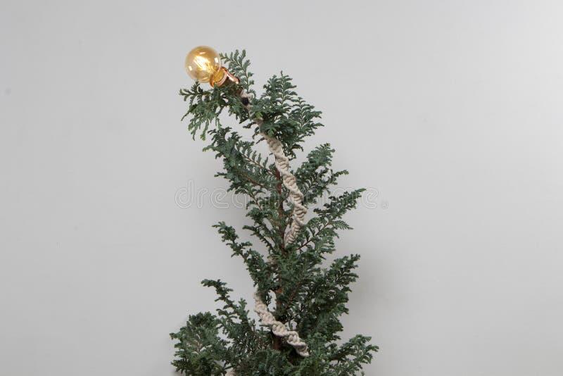 Weihnachtsbaum stricken mit weißem Hintergrund der Makramee und der Glühlampe lizenzfreie stockbilder