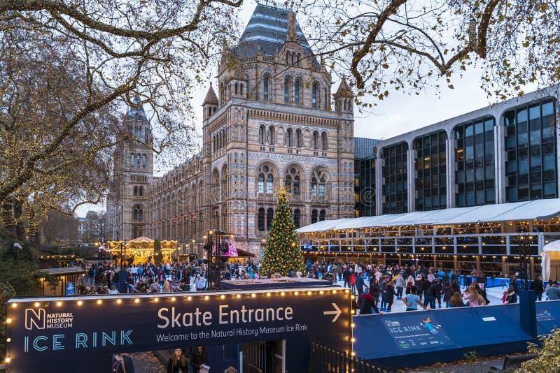 Weihnachtsbaum und Eislaufeisbahn außerhalb des Naturgeschichtliches Museums stockbild