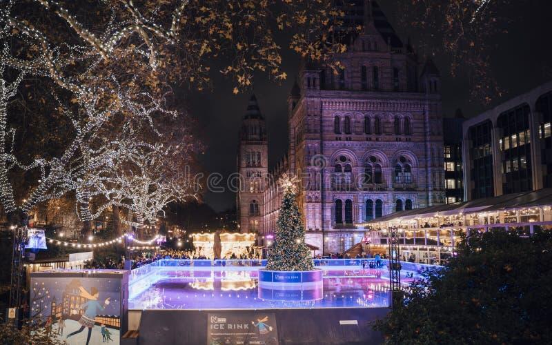 Weihnachtsbaum und Eislaufeisbahn nachts außerhalb des Naturgeschichtliches Museums stockfotos