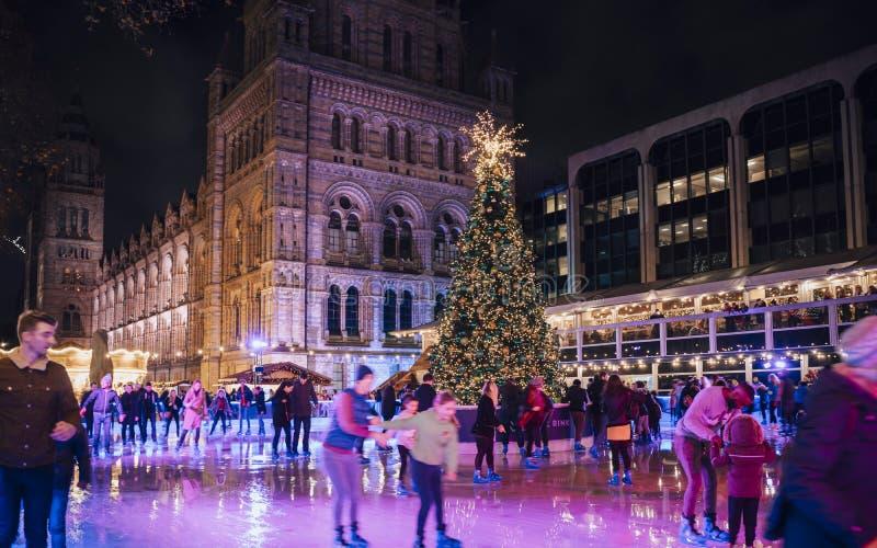 Weihnachtsbaum und Eislaufeisbahn nachts außerhalb des Naturgeschichtliches Museums lizenzfreie stockfotografie