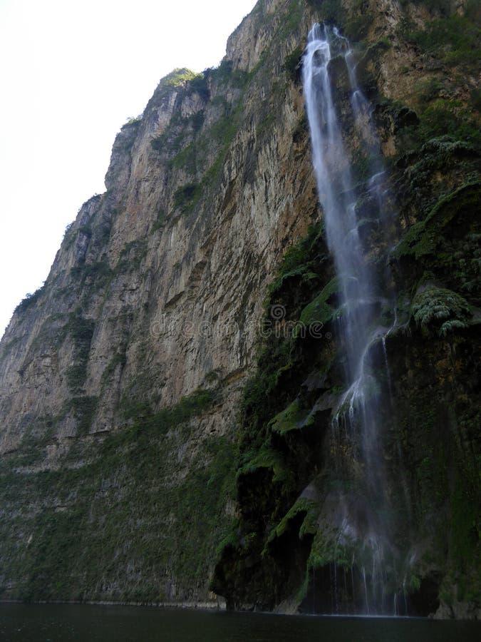 Weihnachtsbaum-Wasserfall an Sumidero-Schlucht lizenzfreie stockfotos