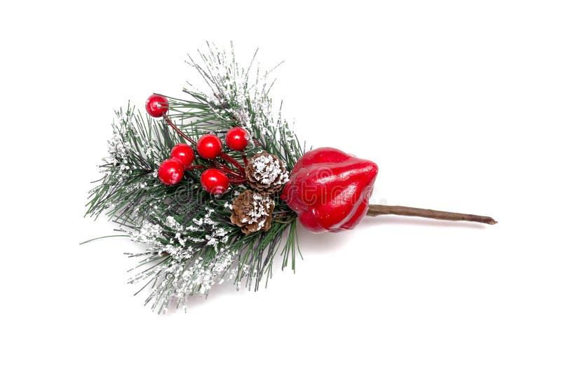 Weihnachtsbaumast stockbild