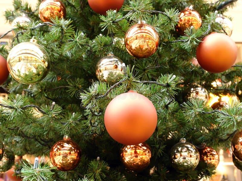 Weihnachtsbaumnahaufnahme stockfotografie