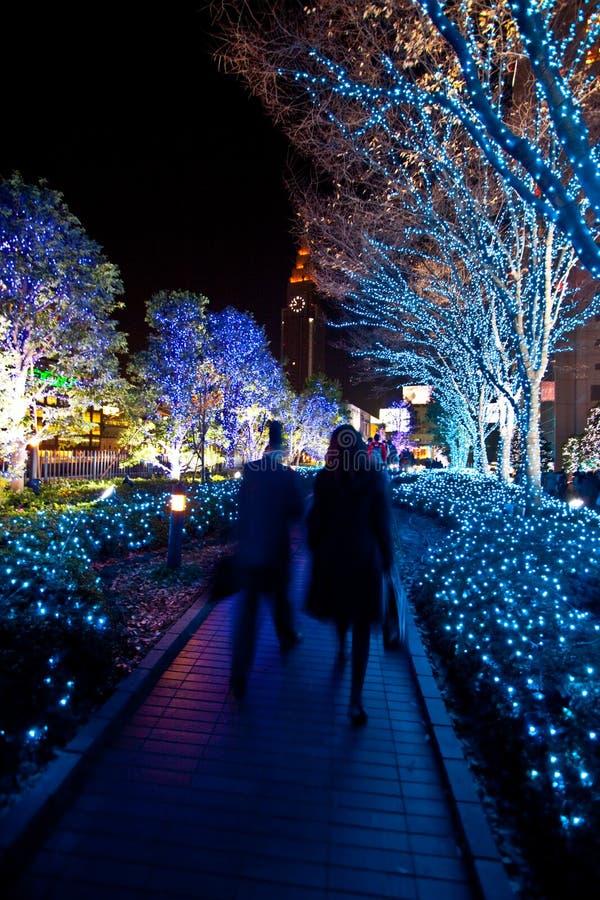 Weihnachtsbeleuchtunglandschaftsgestaltung stockbild