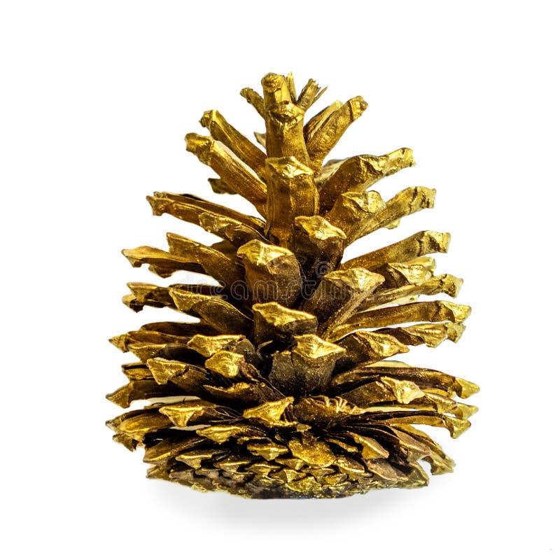 Weihnachtsdekoration - Goldkiefer Kegel lokalisiert auf weißem backgro stockbild