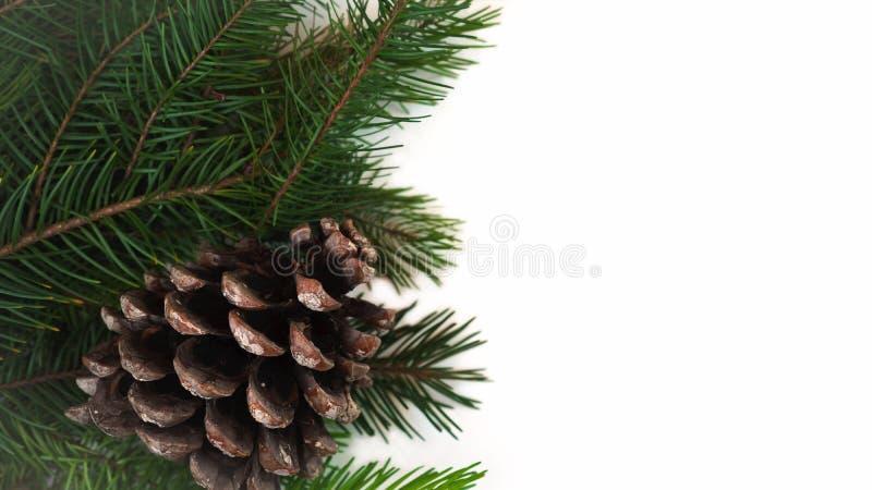 Weihnachtsdekorations-Tannenbaumaste mit Kiefernkegel auf dem weißen Hintergrund lokalisiert Kopieren Sie Platz Weihnachts- und d stockfoto