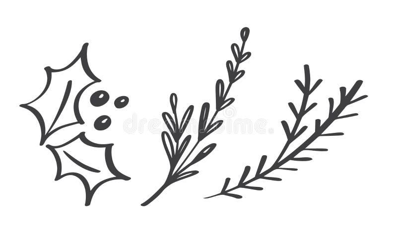 Weihnachtsentwerfen dekorative Niederlassungselemente Blumenblätter in der skandinavischen Art Vektor handdraw Illustration für W vektor abbildung