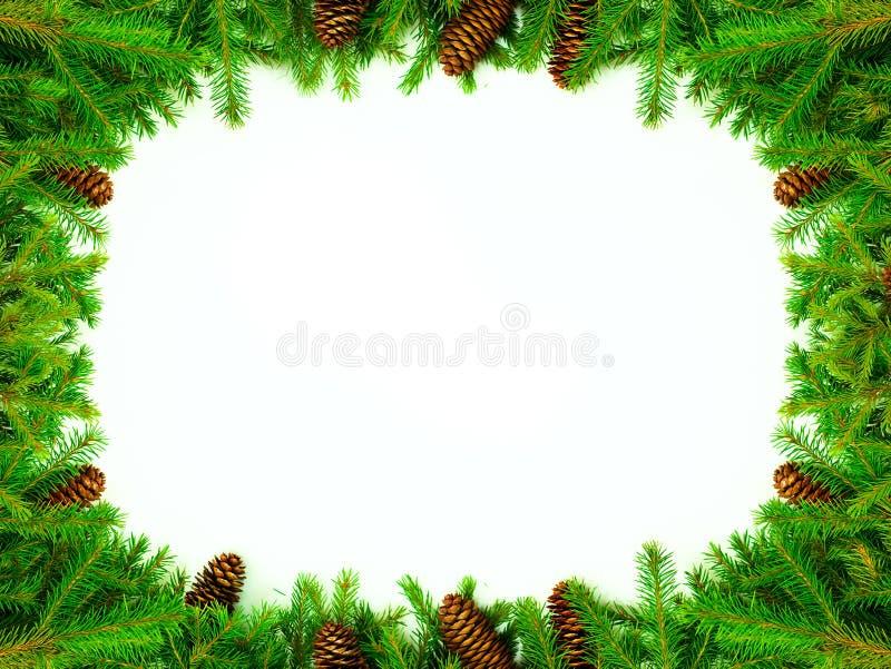 Weihnachtsfeld für Glückwünsche lizenzfreie stockfotos