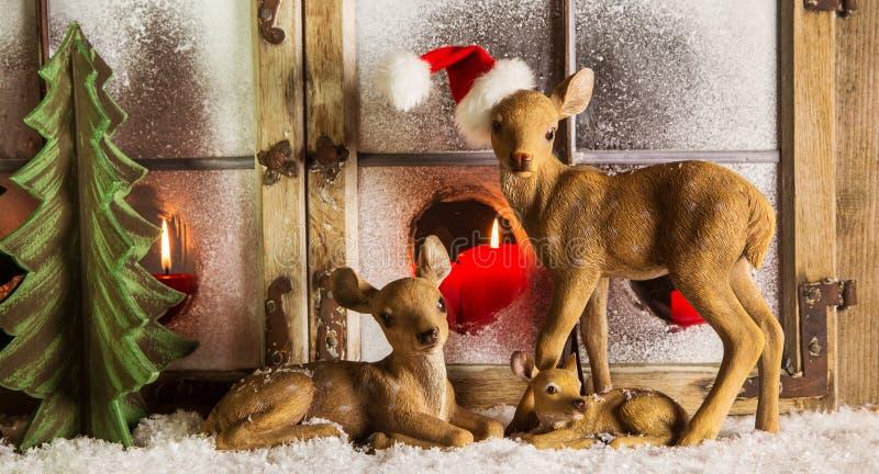 Weihnachtsfensterdekoration: Rotwildfamilie mit roten Kerzen stockbilder