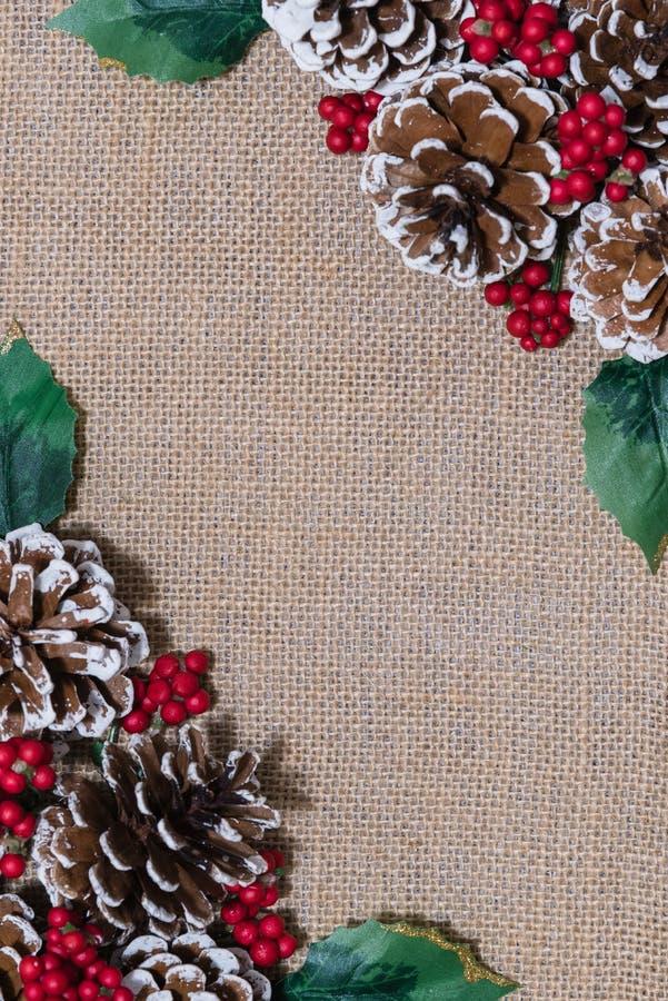 Weihnachtsflachlage-Anordnung pinecones, rote Beeren und Stechpalmenblätter stockfotografie