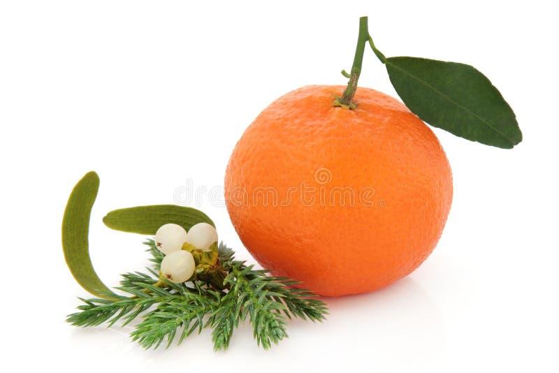 Weihnachtsfrucht stockfoto