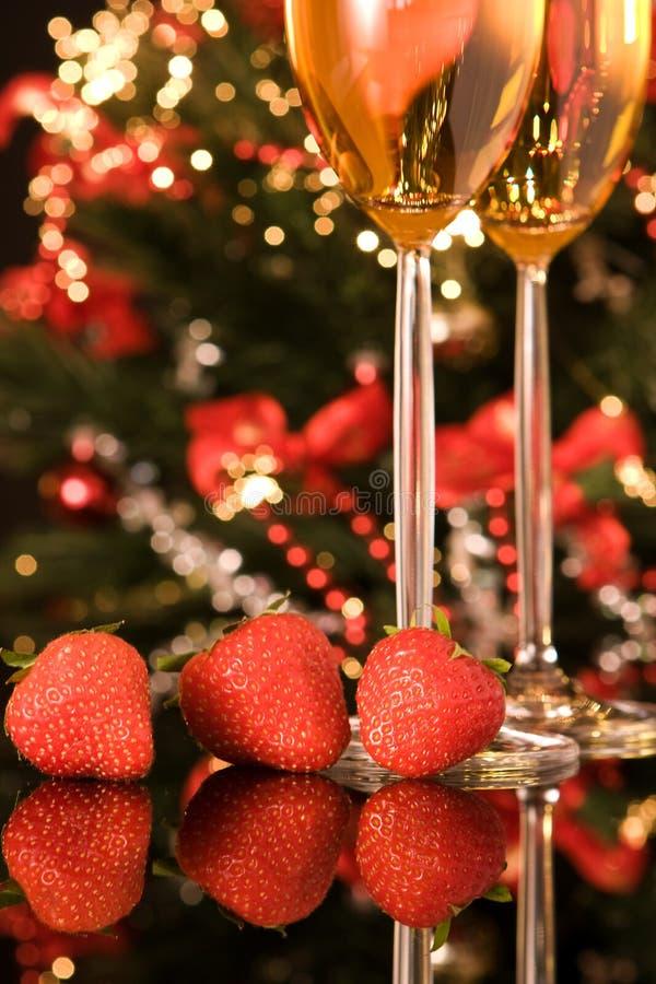 Weihnachtsfrucht stockbild