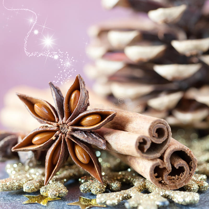Weihnachtsgeruch lizenzfreie stockfotos