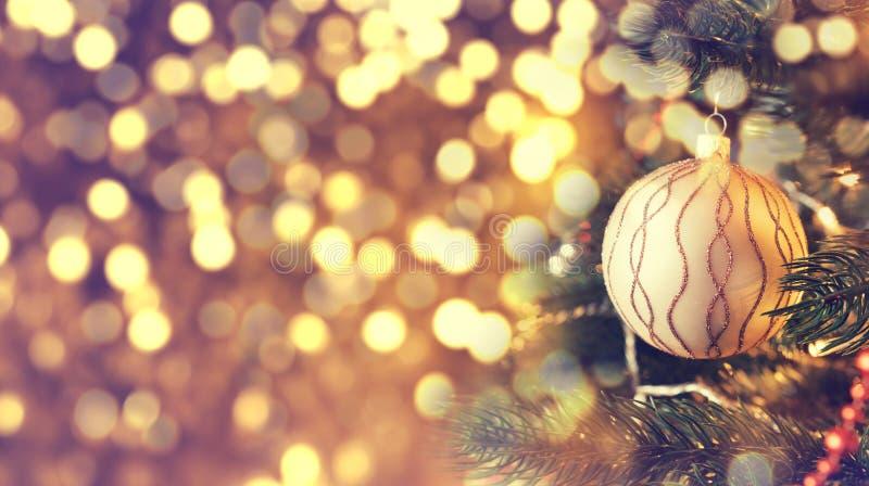 Weihnachtsgoldener Ball, der an einer Kiefer hängt lizenzfreie stockfotos