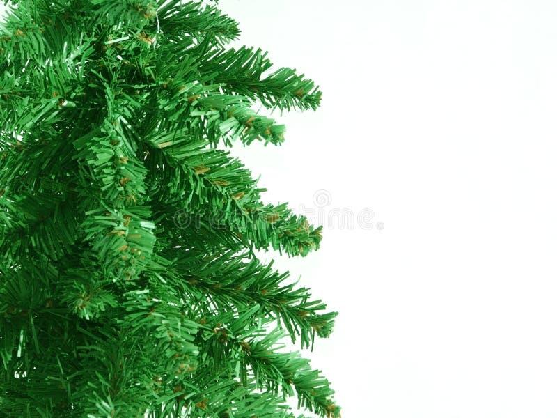 Weihnachtsgrün stockbilder