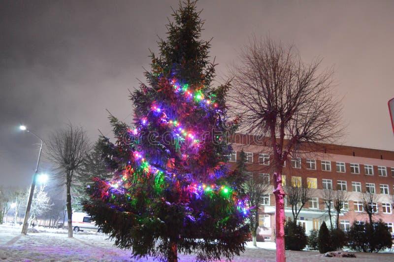 Weihnachtsgrüner Baum mit bunten Lichtern, Girlanden lizenzfreie stockbilder