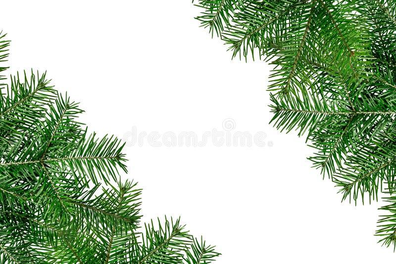 Weihnachtsgrüner Rahmen lokalisiert auf weißem Hintergrund lizenzfreie stockfotografie