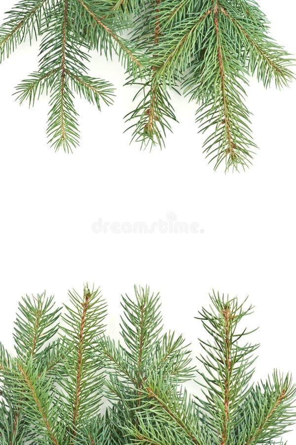 Weihnachtsgrußbild stockfoto