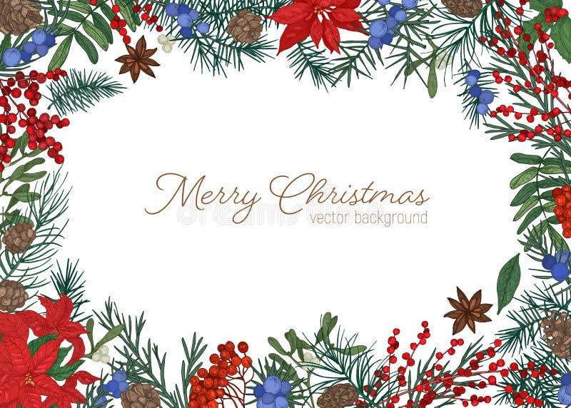 Weihnachtsgrußkartenschablone verziert durch Niederlassungen und Kegel des Koniferenbaums, der Stechpalme, des Mistelzweiges und  lizenzfreie abbildung