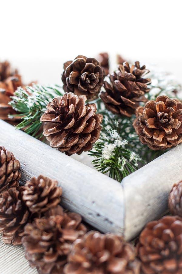 Download Weihnachtshintergrund stockfoto. Bild von kiefer, nahaufnahme - 27726580