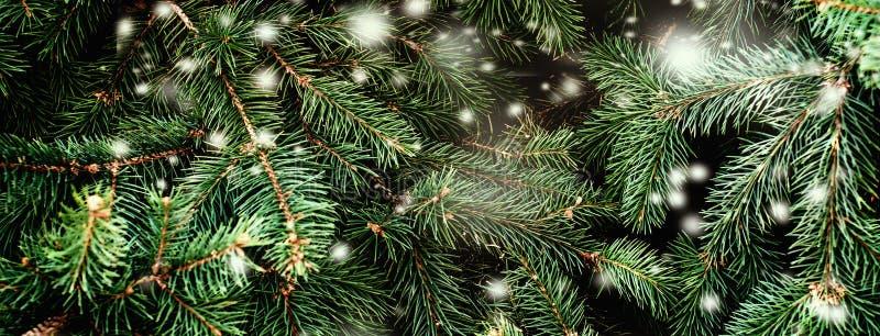 Weihnachtshintergrund mit fallenden weißen Schnee- und Tannenbaumasten Frohe Weihnacht-festliche Karte Kopieren Sie Platz lizenzfreies stockbild