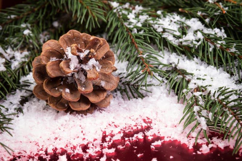 Weihnachtshintergrund mit Kegel lizenzfreie stockfotografie