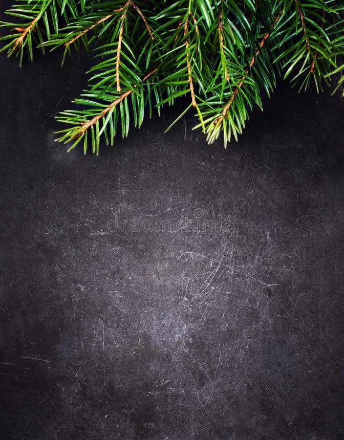 Weihnachtshintergrund mit Tannen-Baum auf Weinlese-Schwarzbrett mit lizenzfreies stockfoto