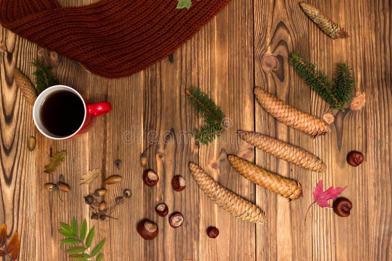 Weihnachtshintergrund mit Tannenzweigen und Kegeln lizenzfreies stockbild