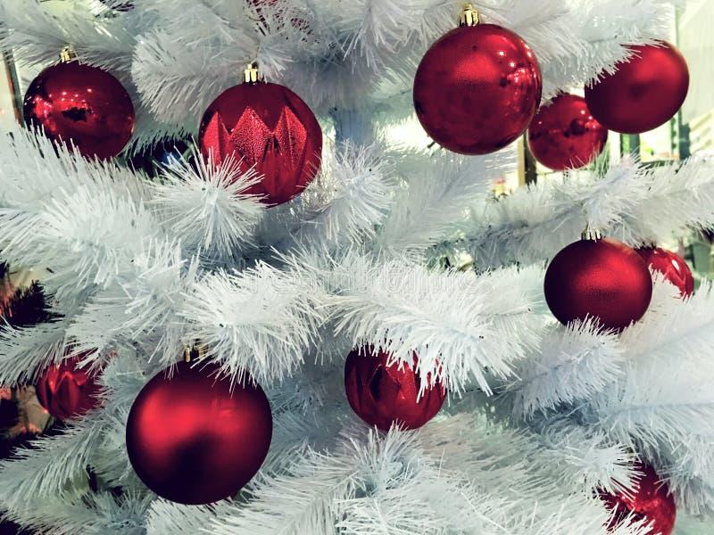 Weihnachtshintergrund mit weißem Weihnachtsbaum und roten Bällen Niederlassungen der Tanne und der Dekorationen stockfoto