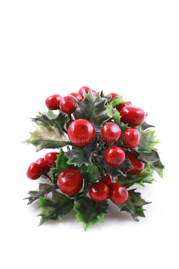 Weihnachtsimmergrün stockfoto