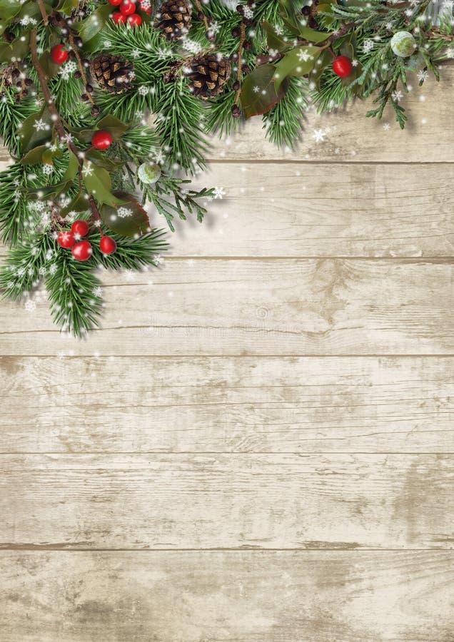 Weihnachtsimmergrüne Niederlassungen und -stechpalme auf hölzernem Hintergrund lizenzfreie stockfotos
