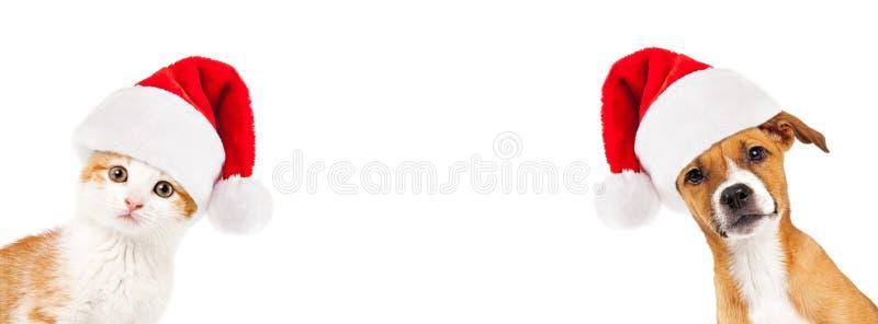 Weihnachtskätzchen-und -welpen-Fahne lizenzfreie stockbilder