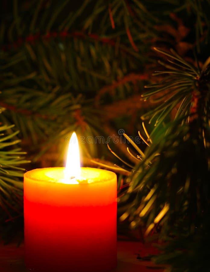 Weihnachtskerze mit neues Jahr ` s Baumbrunch auf dunklem Hintergrund stockbilder