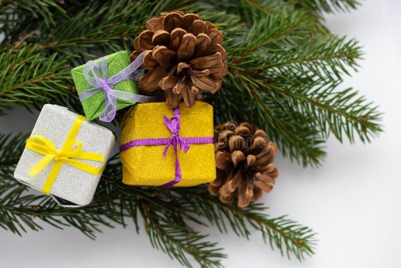 Weihnachtskomposition Weihnachtsgeschenk, Kiefernhörnchen, Tannenbäume auf weißem Grund Obere Ansicht, flache Lage, Kopierplatz lizenzfreie stockbilder