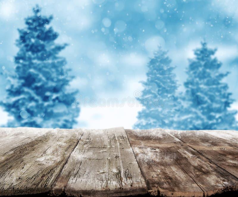 Weihnachtslandschaft stockfotografie