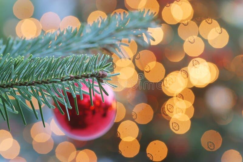 Weihnachtsleuchten stockfotos