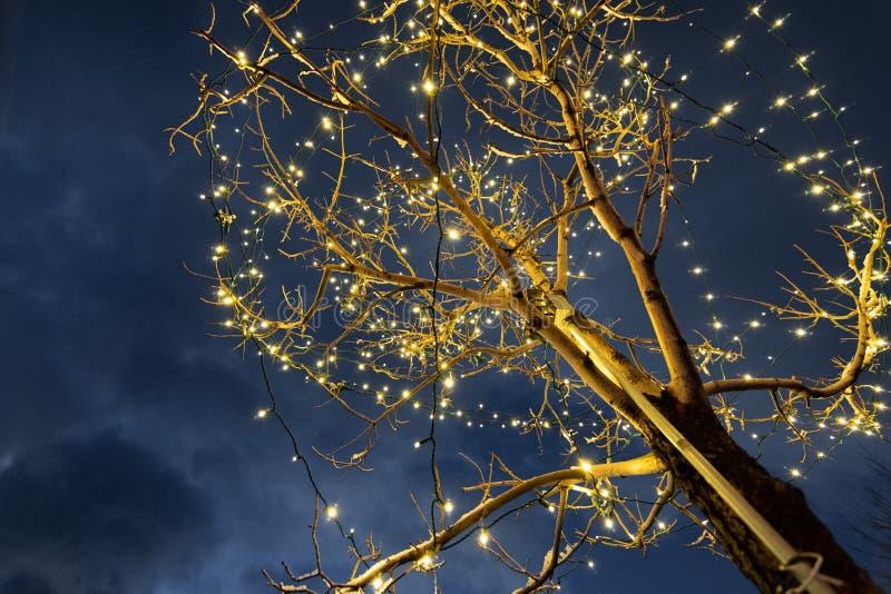Weihnachtslichter, die einen Baum verzieren; Hintergrund des bewölkten Himmels stockfotografie
