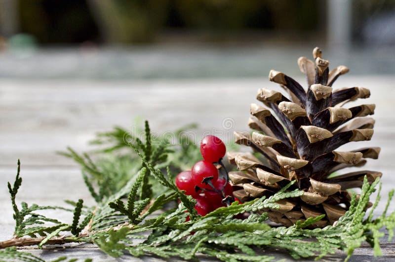 Weihnachtsmittelstück lizenzfreies stockfoto