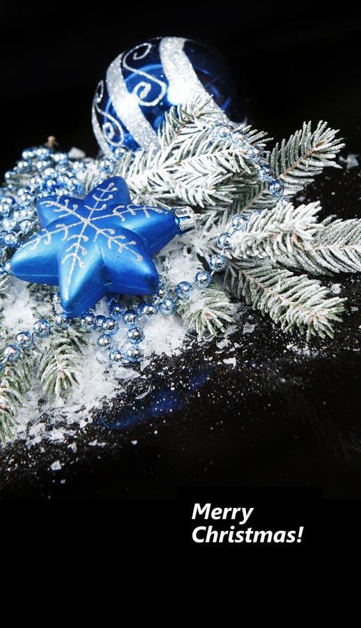 Weihnachtsnoch Leben auf schwarzem Hintergrund lizenzfreie stockfotografie