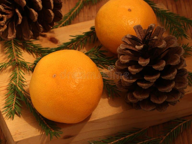 Weihnachtsnoch lebens- Mandarinen, -tannenbäume und -kegel lizenzfreie stockbilder