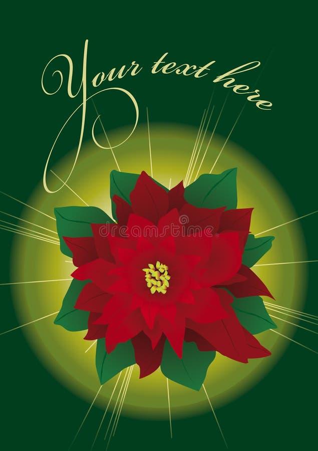 Weihnachtspoinsettia stock abbildung