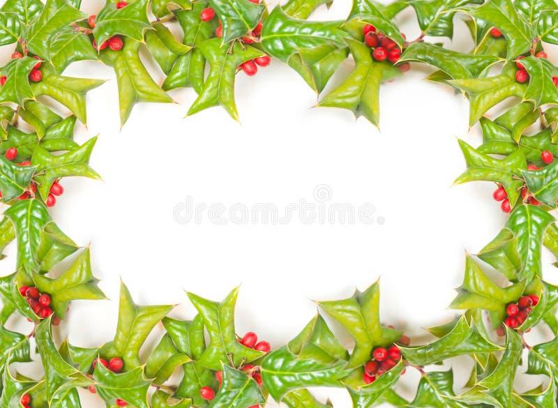 Weihnachtsrahmen mit der Stechpalmebeere getrennt lizenzfreie stockfotos