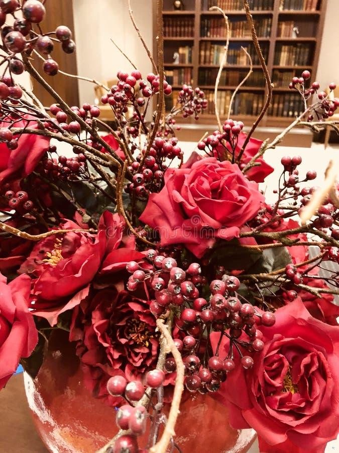 Weihnachtsrotblume stockfotografie