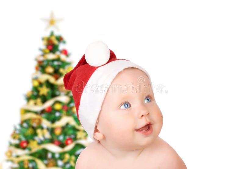 Weihnachtsschätzchen lizenzfreie stockfotografie